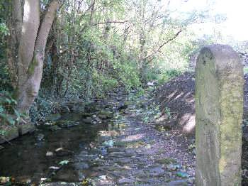 Cottingley Beck