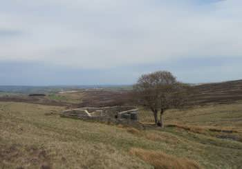 Top Withens, near Haworth