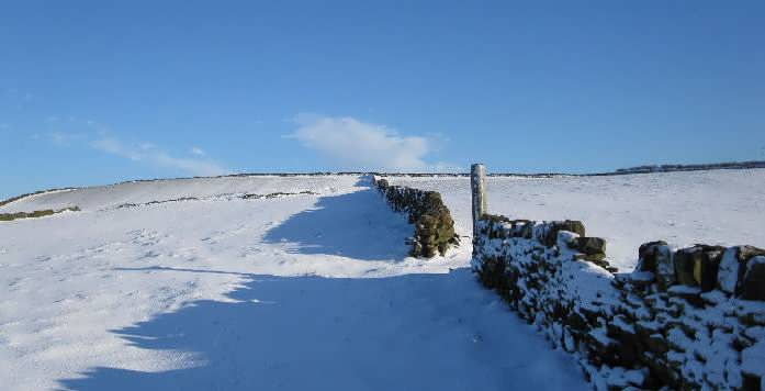 Bronte Country in winter